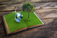 Open grass book with tree on wood background. Open grass book with wind turbine,solar cell,tree and earth on wood background  (Elements of this image furnished Royalty Free Stock Images