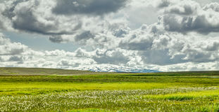 Open grassland with cloudscape and shield volcano in background. Iceland. Open grassland with clouds and snow covered volcano Skjaldbreidur. Beautiful landscape Stock Image