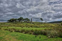 Open green fields with trees on top of Dartmoor in England. Open green fields with trees at Dartmoor National Park its a vast moorland in the county of Devon stock photos