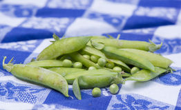 Open green peas Royalty Free Stock Photography