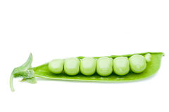 Open green peas pod Royalty Free Stock Photo