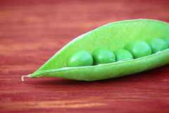 Open green pod of pea. Closeup of open green pea pod Stock Images
