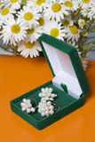 An open green velvet box for jewelry. In it lies a set: a ring and earrings with pearls. Next to the vase is a bouquet of chamomil. E. On a orange background Stock Image