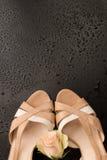 Open ha piantato le scarpe di traverso d'annata Immagine Stock Libera da Diritti
