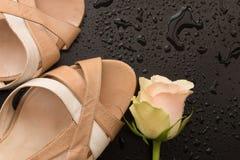 Open ha piantato le scarpe di traverso d'annata Fotografia Stock Libera da Diritti
