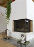 Open haard en een kat. Stock Afbeelding