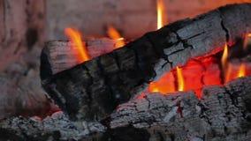 Open haard met brand en brandhout stock video
