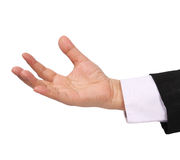 Open hand. Image of business woman open hand on white background royalty free stock images