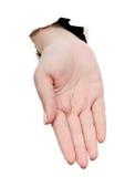 Open hand Stock Fotografie