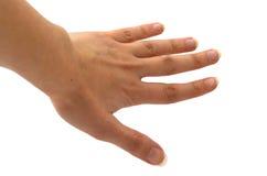 Open Hand Stock Foto