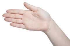Open hand gesture, isolated on white background Stock Photos