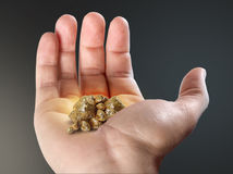 Open Hand With Nuggets Stock Images