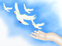 Open Hand Releasing Freedom Bird in Clear Blue Sky. Hand Drawing, Open Hand Releasing Four White Doves Flying to The Freedom in Clear Blue Sky Royalty Free Stock Image