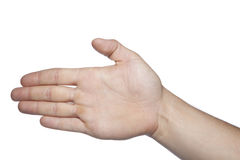 Open hand on a white background, copy space Royalty Free Stock Photo