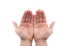Open hands. Holding, giving, showing concept. Royalty Free Stock Photo
