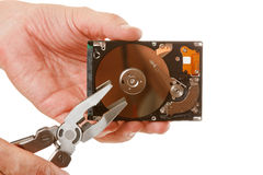 Open hard drive in hand Royalty Free Stock Image