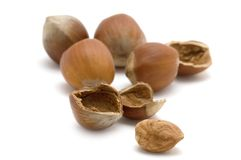 Open hazel nut royalty free stock photography