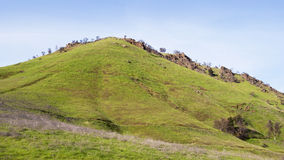 Open Hill Top with New Spring Grasses Royalty Free Stock Photography