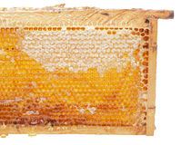 Open honeycomb. In wooden frame Royalty Free Stock Photo