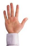 Open human palm Royalty Free Stock Photo