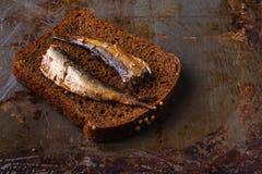 Open ingeblikt vissen, vork en brood Royalty-vrije Stock Afbeelding