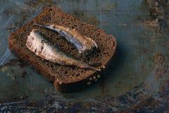Open ingeblikt vissen, vork en brood Royalty-vrije Stock Fotografie