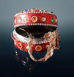 Open juwelendoos royalty-vrije stock foto