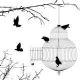 Open kooi en vogelssilhouetten Stock Afbeeldingen