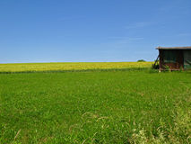 Open land Royalty Free Stock Photography