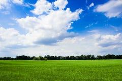 Open land Royalty-vrije Stock Afbeeldingen