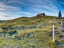 Open land landcape met grasrijke weide en rijp en ijs en oude houten omheining in het midden onder een expansieve hemel en houten stock foto