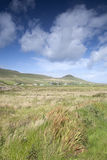 Open Landscape on Dingle Peninsula Royalty Free Stock Photo