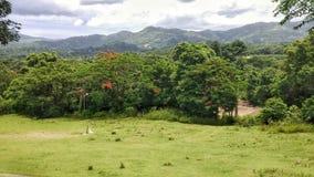Open Landscape royalty free stock image