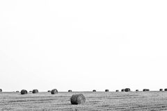 Open Landscape with Hay Bales Royalty Free Stock Photo