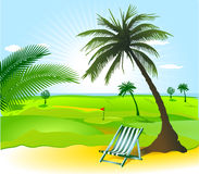 Open landscape with palm Royalty Free Stock Images