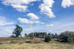 Open landscape with some trees. Land that has been used for Pasture for a long time Royalty Free Stock Photography