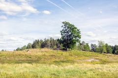 Open landscape with some trees. Land that has been used for Pasture for a long time Stock Photo
