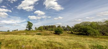Open landscape with some trees. Land that has been used for Pasture for a long time Stock Images
