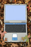 Open Laptop In Leaves Stock Image