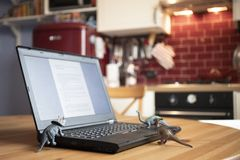 Laptop on wooden table with dinosaur toys stock image