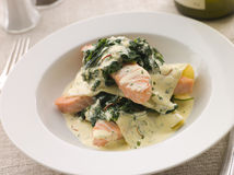 Open Lasagne of Salmon and Spinach Stock Images