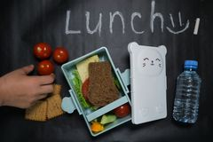 Open lunch box with a sandwich of whole grain bread, cheese, green salad, tomato, cucumber and a bottle of water on a black royalty free stock photos