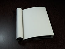 Open magazine with blank pages. 3D rendering. Open magazine with blank pages on wood desk. 3D rendering Stock Photo