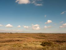 Open marshland landscape scene with blue skies, clouds, and gras. S; essex; england; UK Royalty Free Stock Images