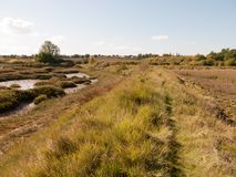 Open marshland landscape scene with blue skies, clouds, and gras. S; essex; england; UK Royalty Free Stock Photography