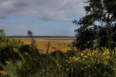 Open Marshland by the sea. Warm marshland grasses with a river flowing through it royalty free stock photography