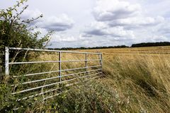 Open farm gate. Open metal framed farm gate to farmland field in rural Hampshire royalty free stock photo