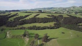 Open Mooie Groene Landschap van Nieuw Zeeland het wijd, Lucht4k stock video
