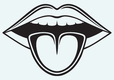 Open mouth, tooth and tongue Royalty Free Stock Images