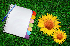 Open note book  on green grass Royalty Free Stock Photo